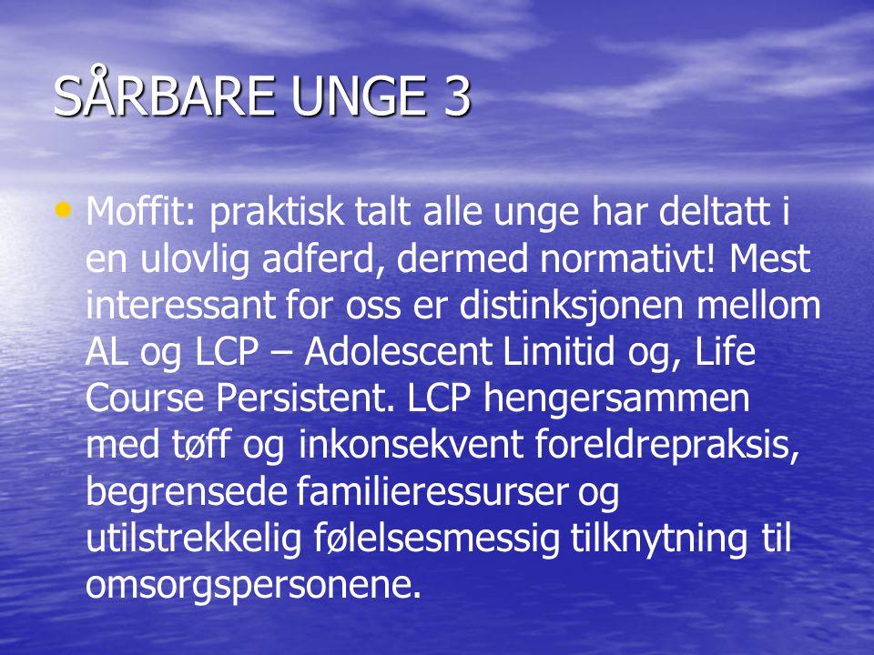 SÅRBARE UNGE 3