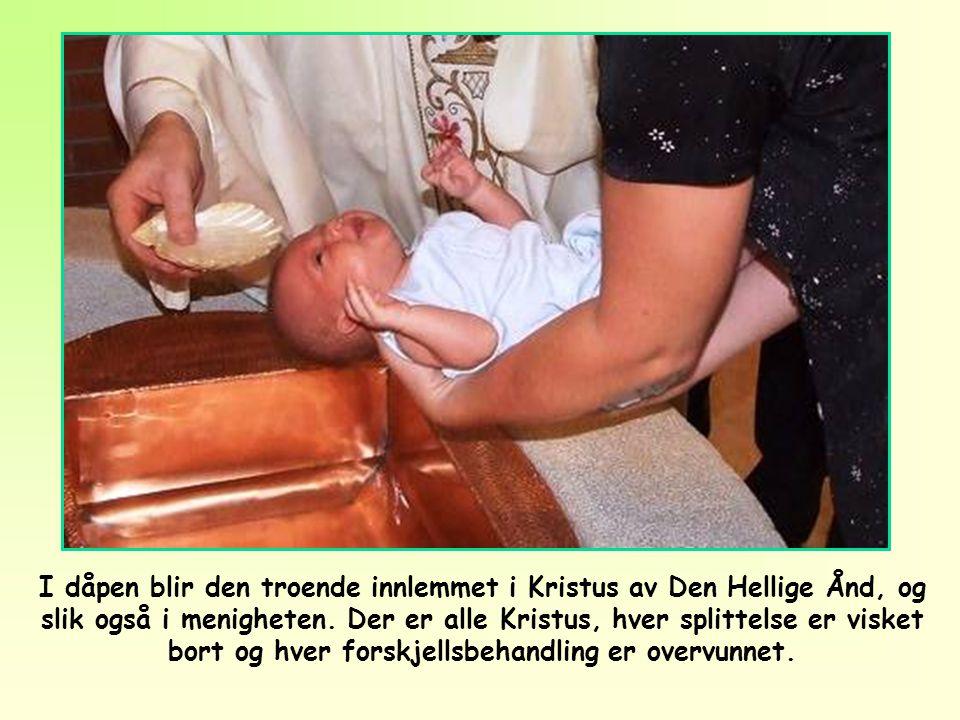 I dåpen blir den troende innlemmet i Kristus av Den Hellige Ånd, og slik også i menigheten.