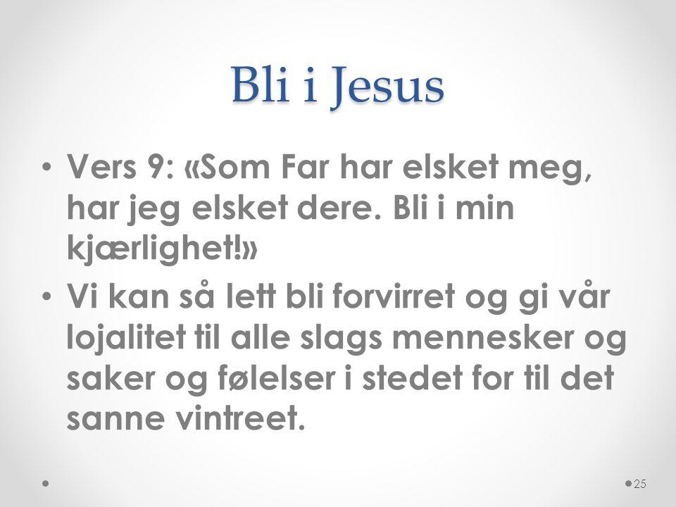 Bli i Jesus Vers 9: «Som Far har elsket meg, har jeg elsket dere. Bli i min kjærlighet!»