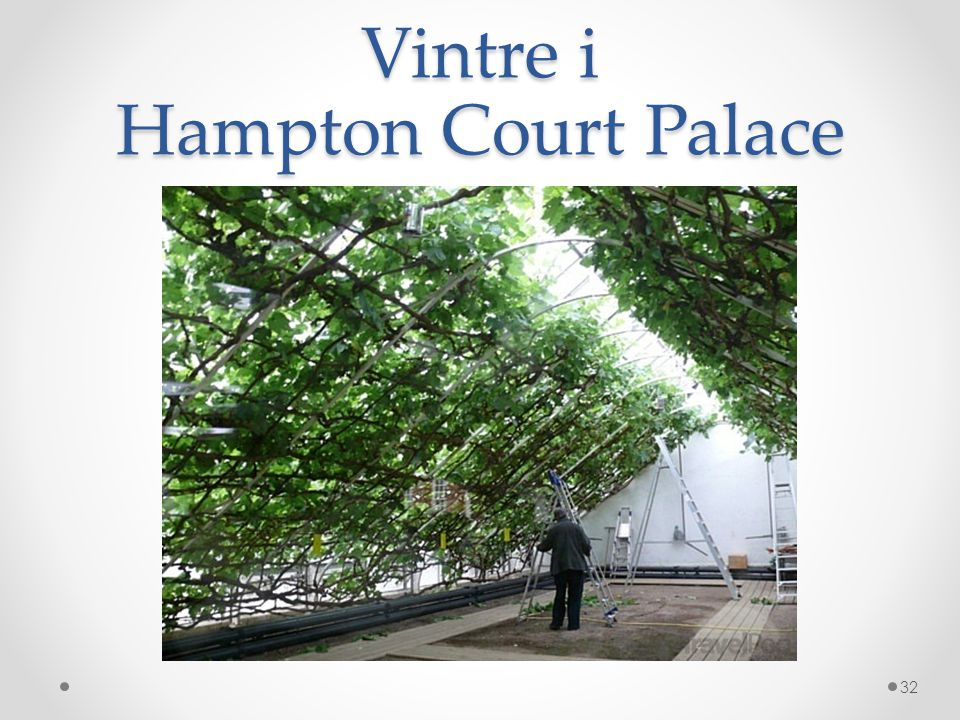 Vintre i Hampton Court Palace