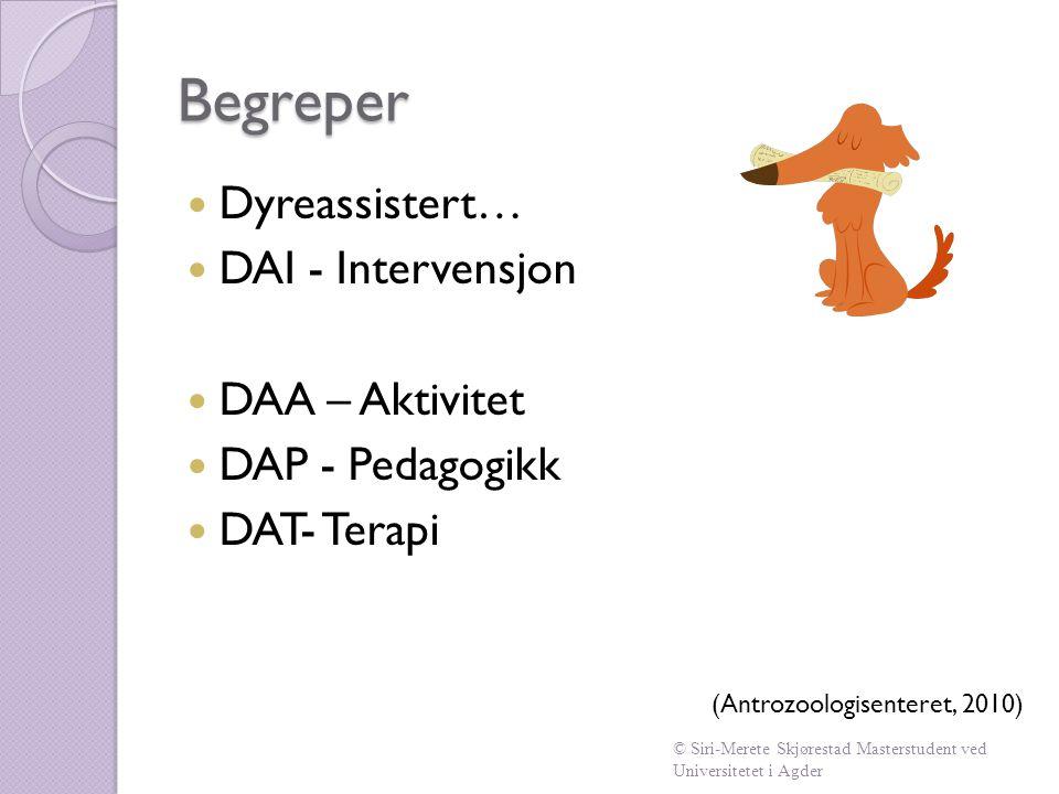 Begreper Dyreassistert… DAI - Intervensjon DAA – Aktivitet