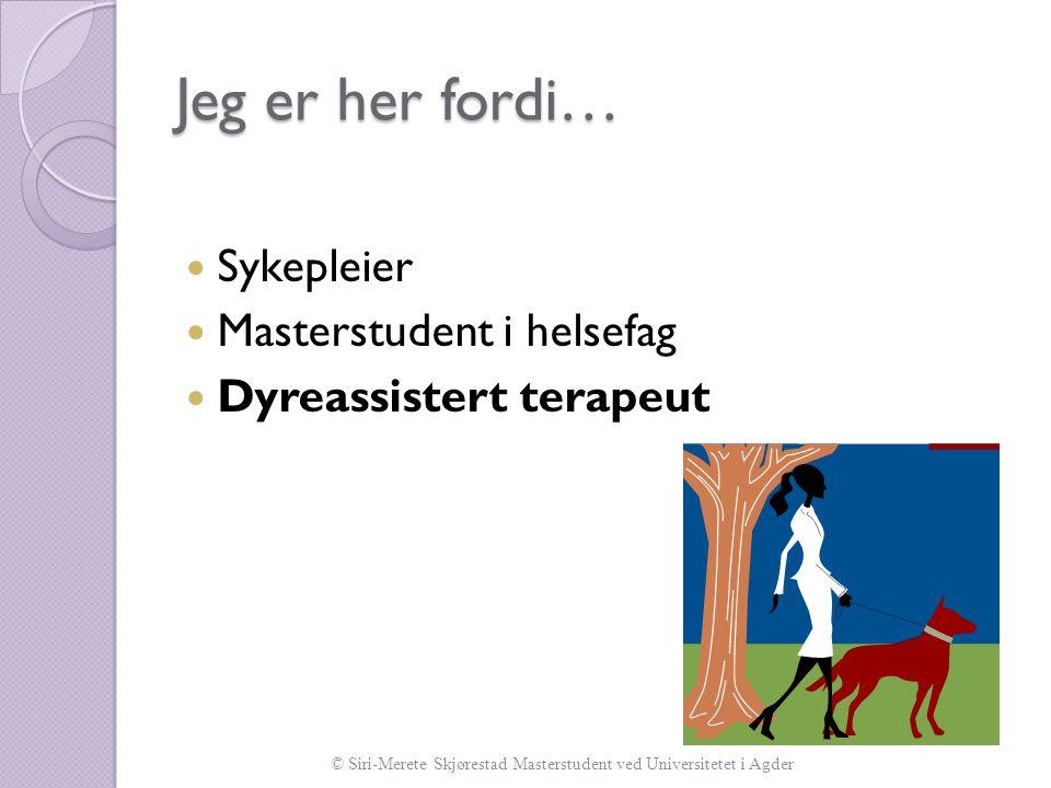 © Siri-Merete Skjørestad Masterstudent ved Universitetet i Agder