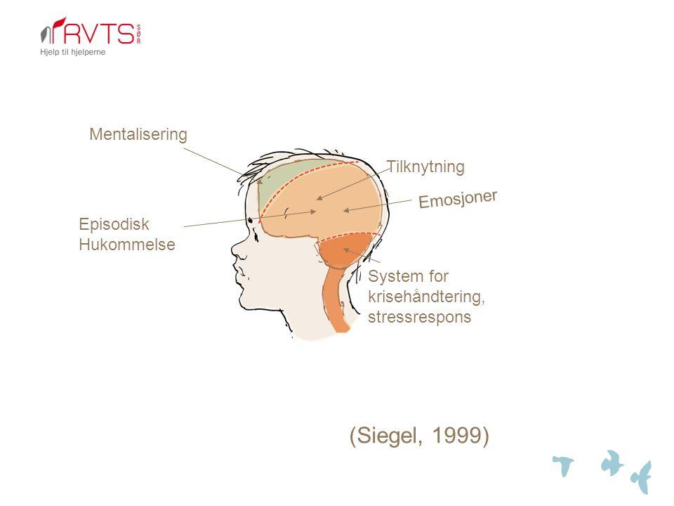 (Siegel, 1999) Mentalisering Tilknytning Emosjoner