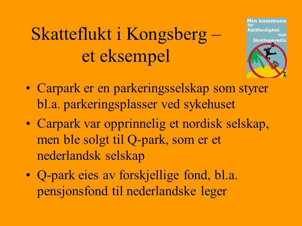 Skatteflukt i Kongsberg – et eksempel