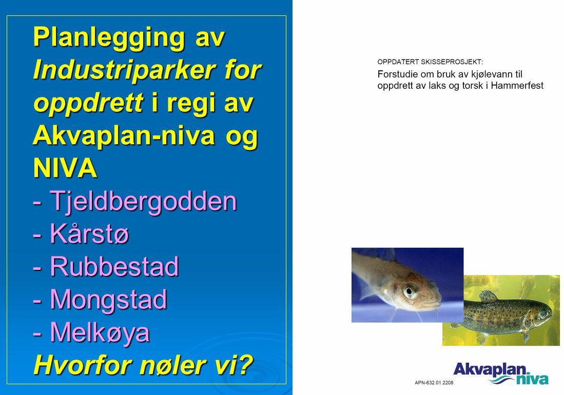 Planlegging av Industriparker for oppdrett i regi av Akvaplan-niva og NIVA - Tjeldbergodden - Kårstø - Rubbestad - Mongstad - Melkøya Hvorfor nøler vi
