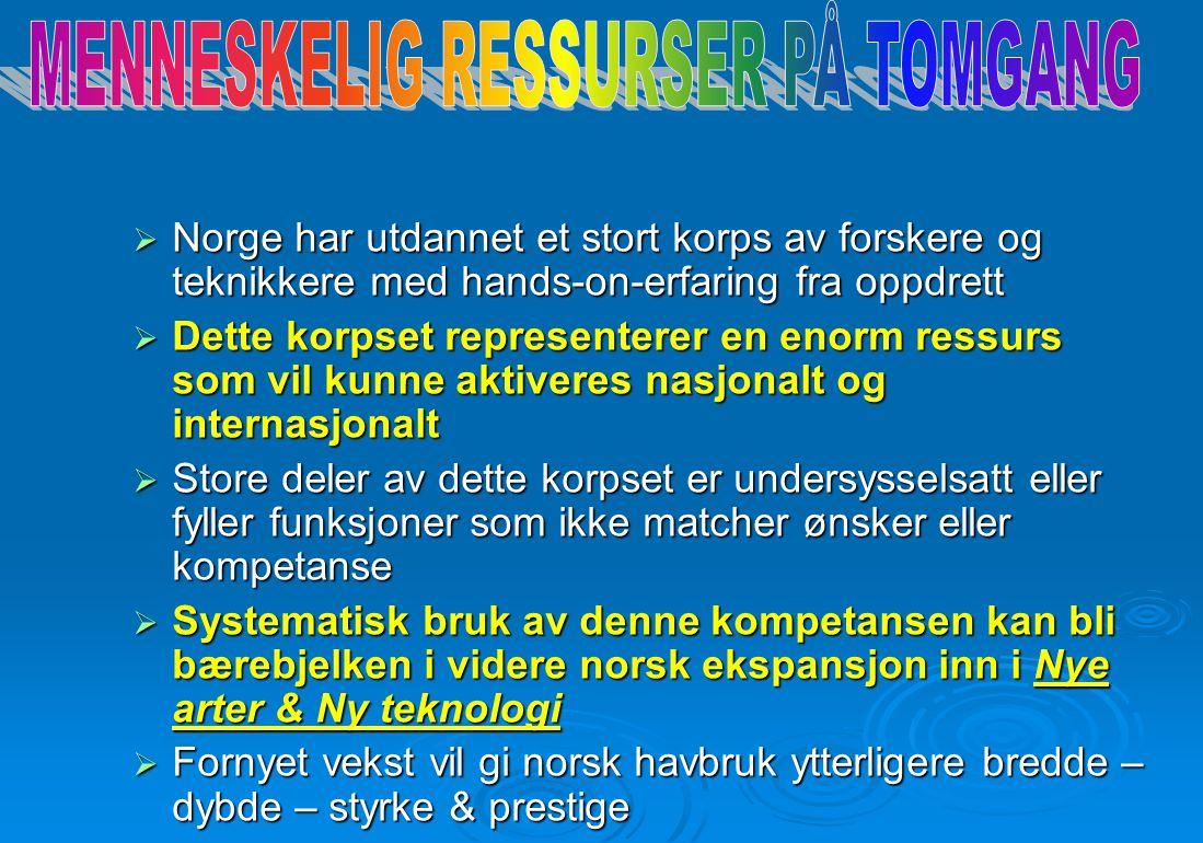 MENNESKELIG RESSURSER PÅ TOMGANG