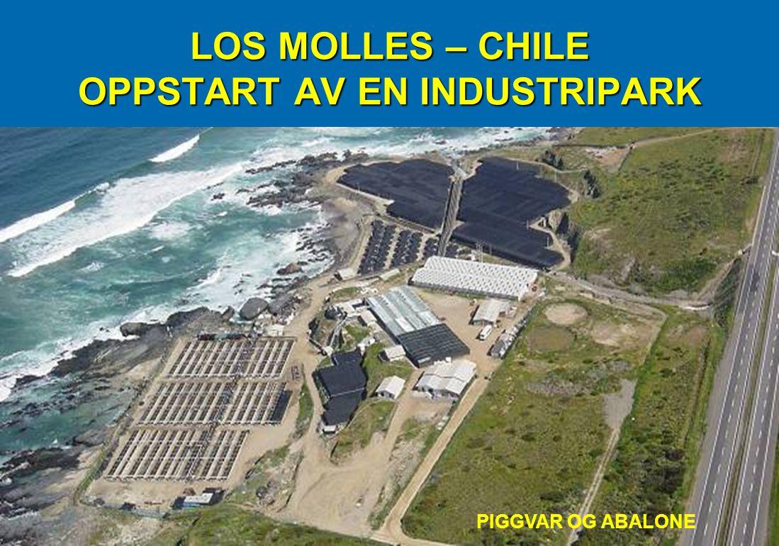 LOS MOLLES – CHILE OPPSTART AV EN INDUSTRIPARK