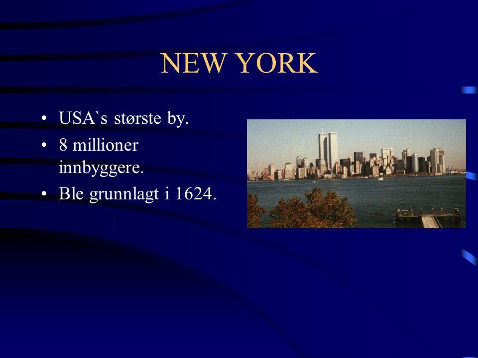 NEW YORK USA`s største by. 8 millioner innbyggere.