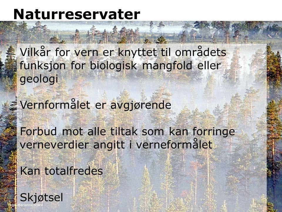 Naturreservater Vilkår for vern er knyttet til områdets funksjon for biologisk mangfold eller geologi.