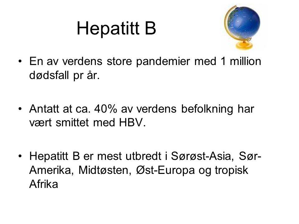 Hepatitt B En av verdens store pandemier med 1 million dødsfall pr år.
