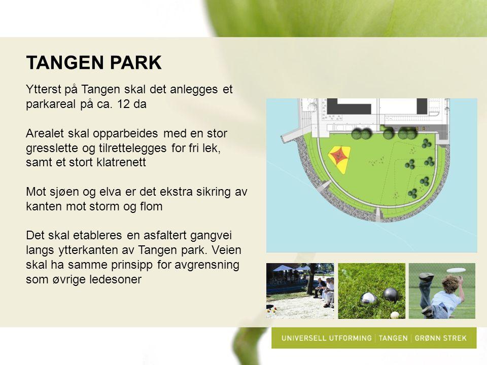 TANGEN PARK Ytterst på Tangen skal det anlegges et parkareal på ca. 12 da.