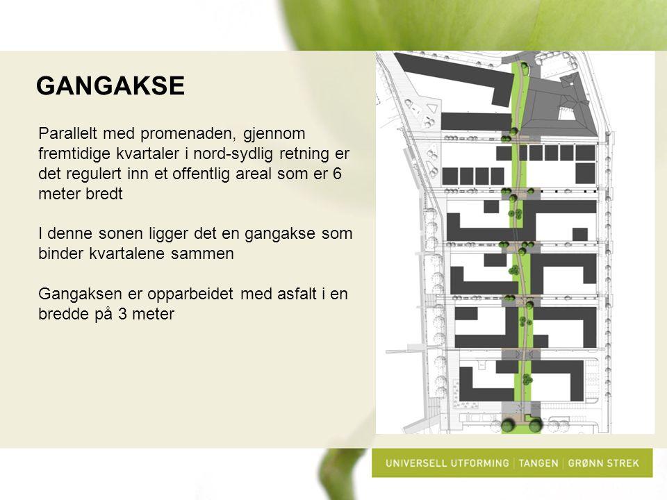 GANGAKSE Parallelt med promenaden, gjennom fremtidige kvartaler i nord-sydlig retning er det regulert inn et offentlig areal som er 6 meter bredt.
