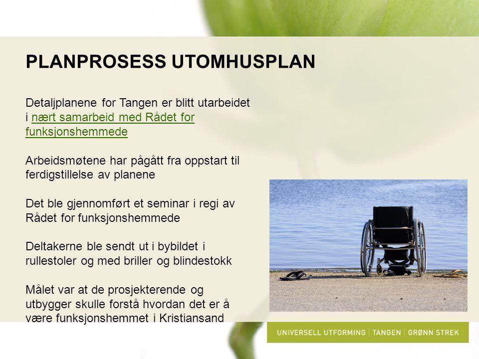 PLANPROSESS UTOMHUSPLAN