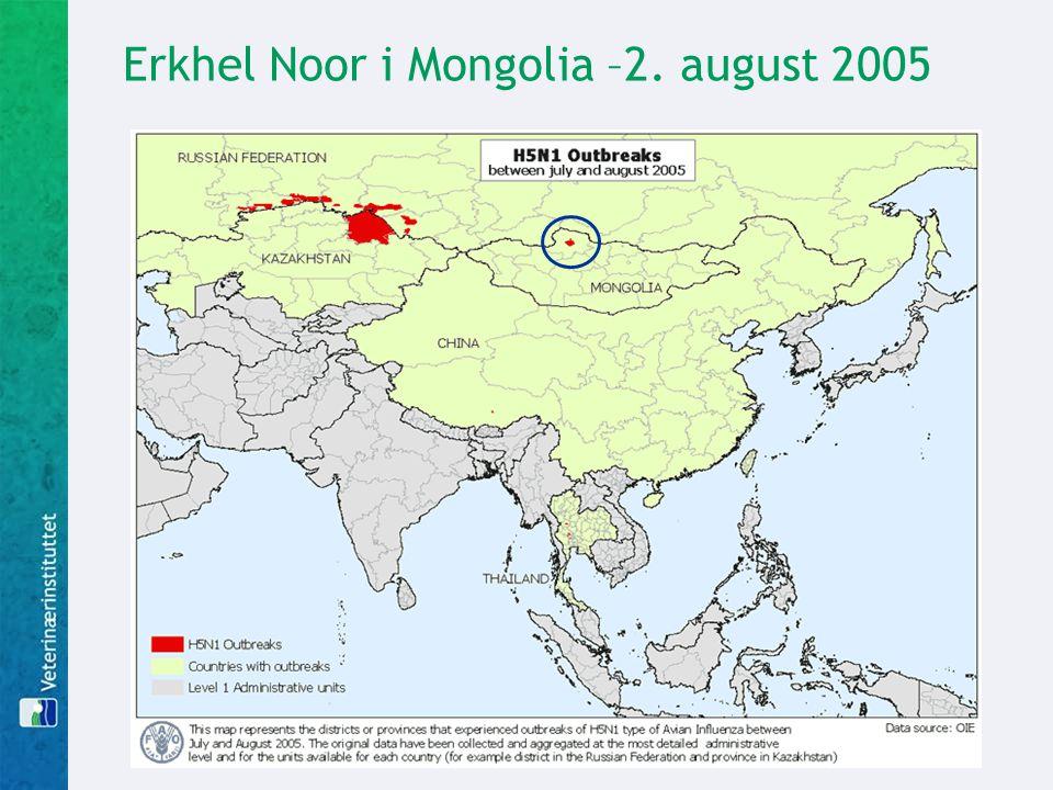 Erkhel Noor i Mongolia –2. august 2005