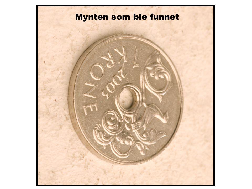 Mynten som ble funnet