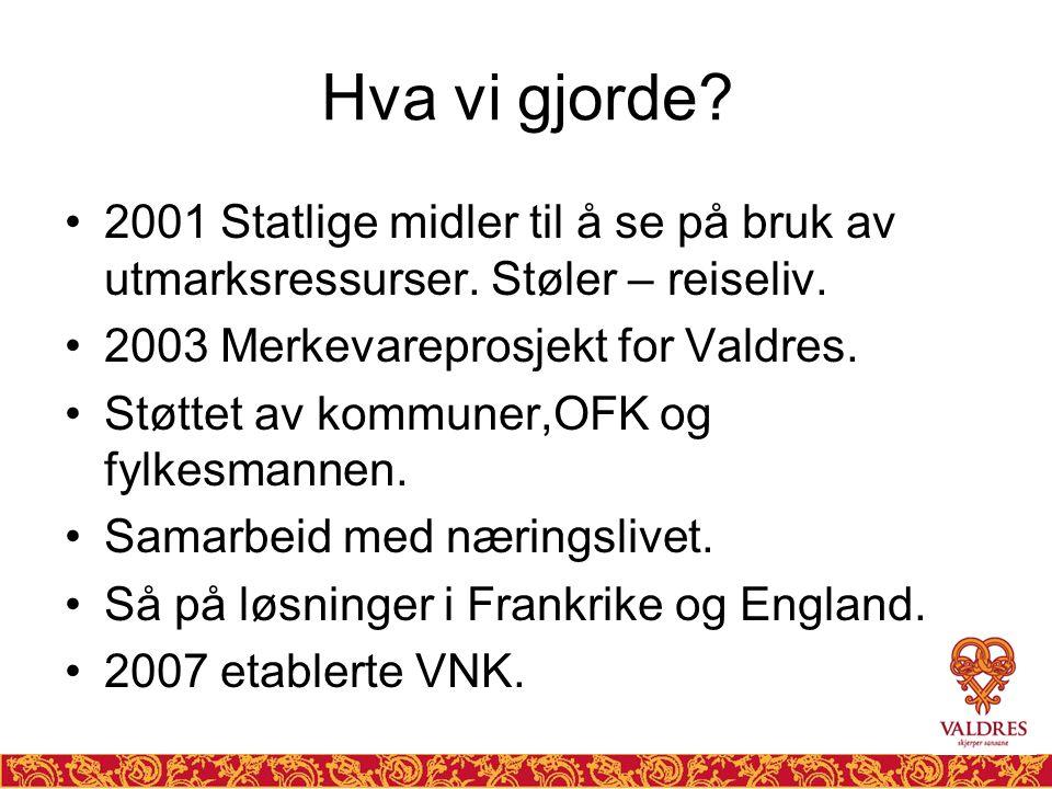 Hva vi gjorde 2001 Statlige midler til å se på bruk av utmarksressurser. Støler – reiseliv. 2003 Merkevareprosjekt for Valdres.