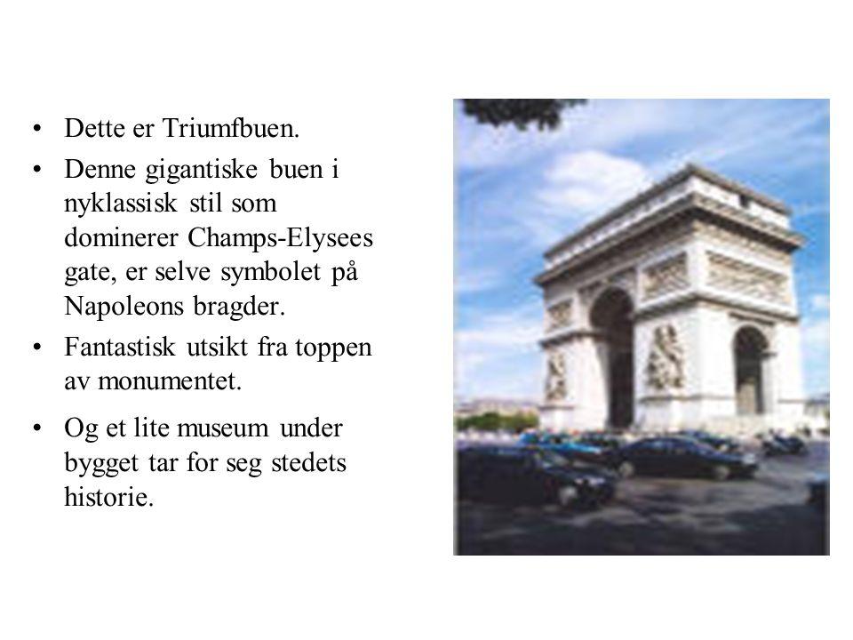 Dette er Triumfbuen. Denne gigantiske buen i nyklassisk stil som dominerer Champs-Elysees gate, er selve symbolet på Napoleons bragder.