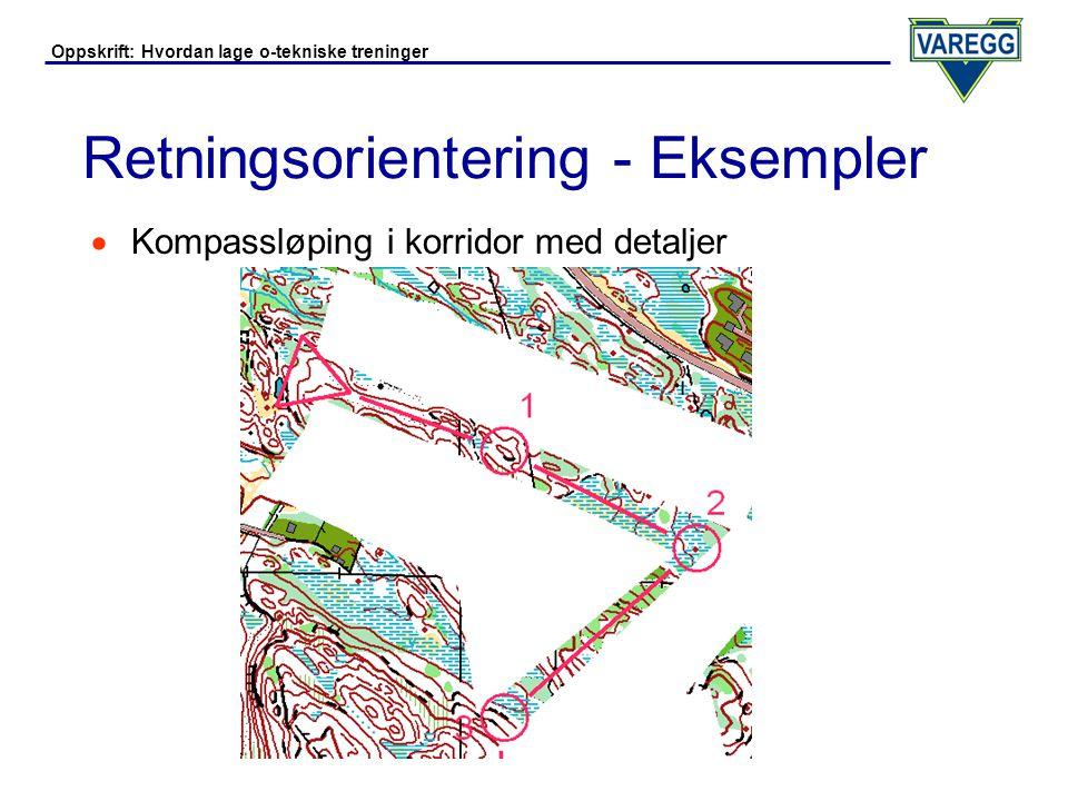 Retningsorientering - Eksempler