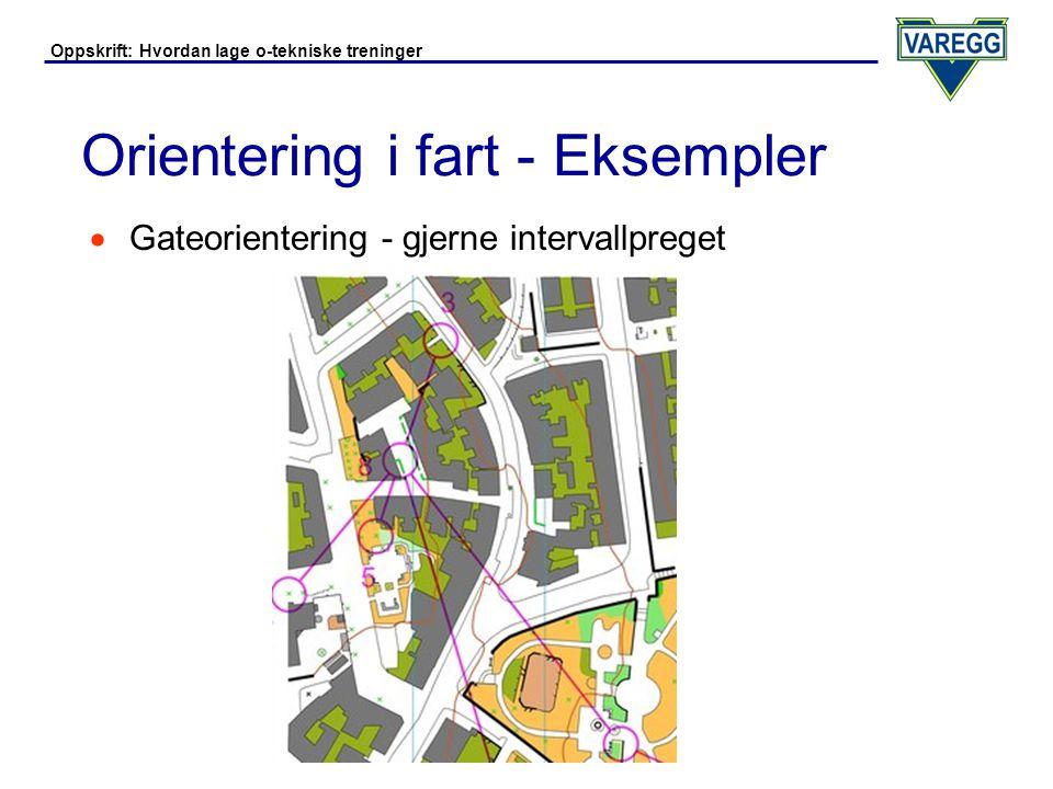 Orientering i fart - Eksempler
