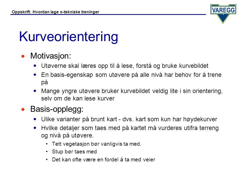 Kurveorientering Motivasjon: Basis-opplegg: