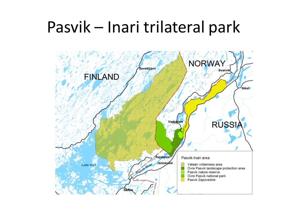 Pasvik – Inari trilateral park