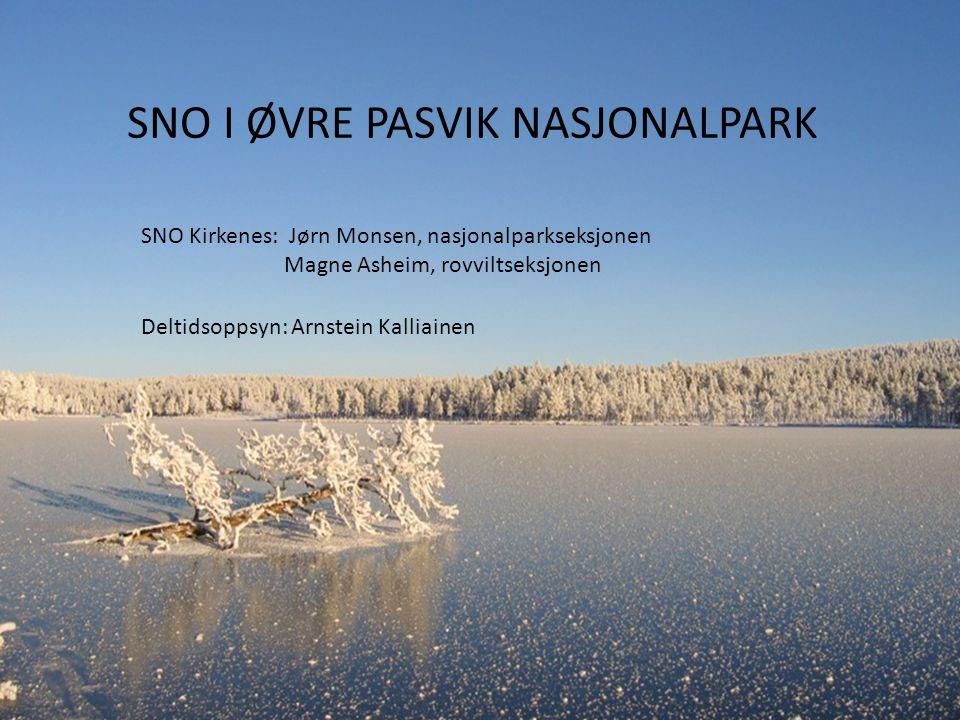 SNO I ØVRE PASVIK NASJONALPARK