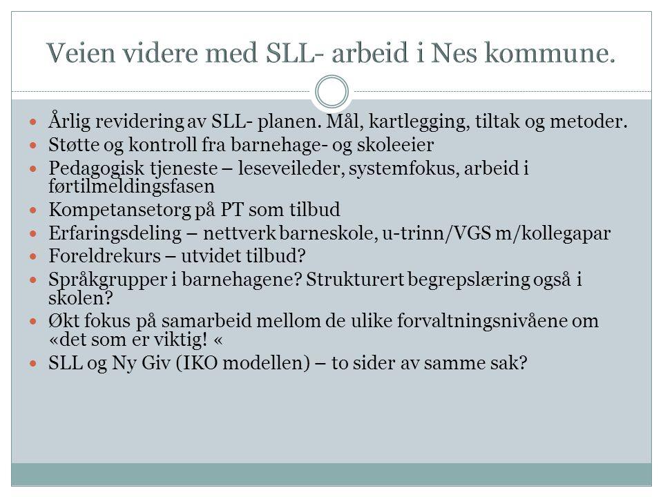Veien videre med SLL- arbeid i Nes kommune.