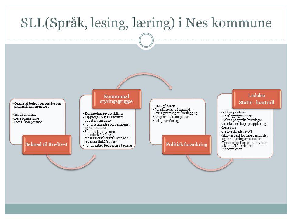 SLL(Språk, lesing, læring) i Nes kommune