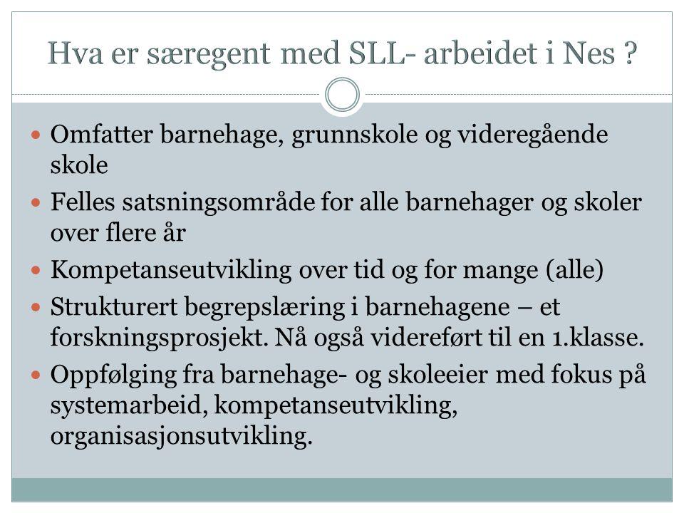 Hva er særegent med SLL- arbeidet i Nes