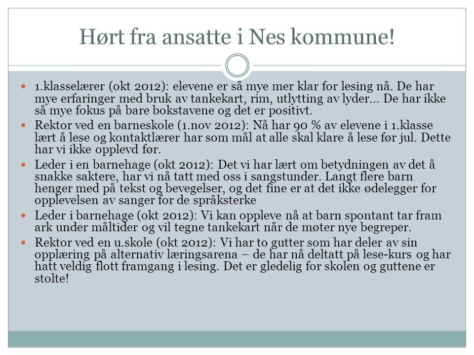 Hørt fra ansatte i Nes kommune!