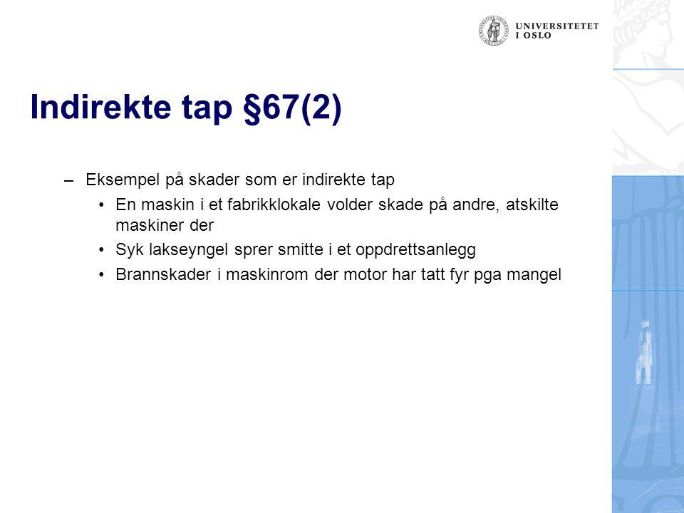Indirekte tap §67(2) Eksempel på skader som er indirekte tap