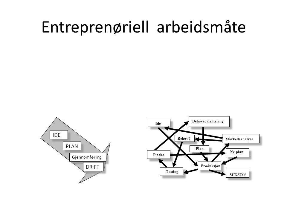 Entreprenøriell arbeidsmåte