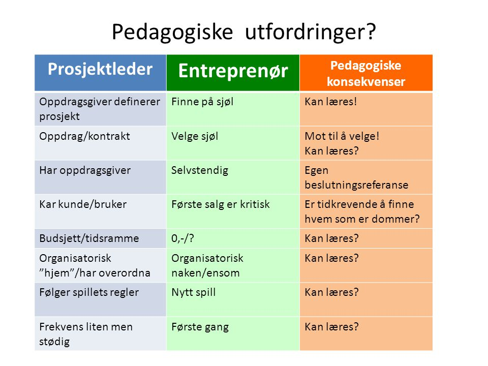 Pedagogiske utfordringer