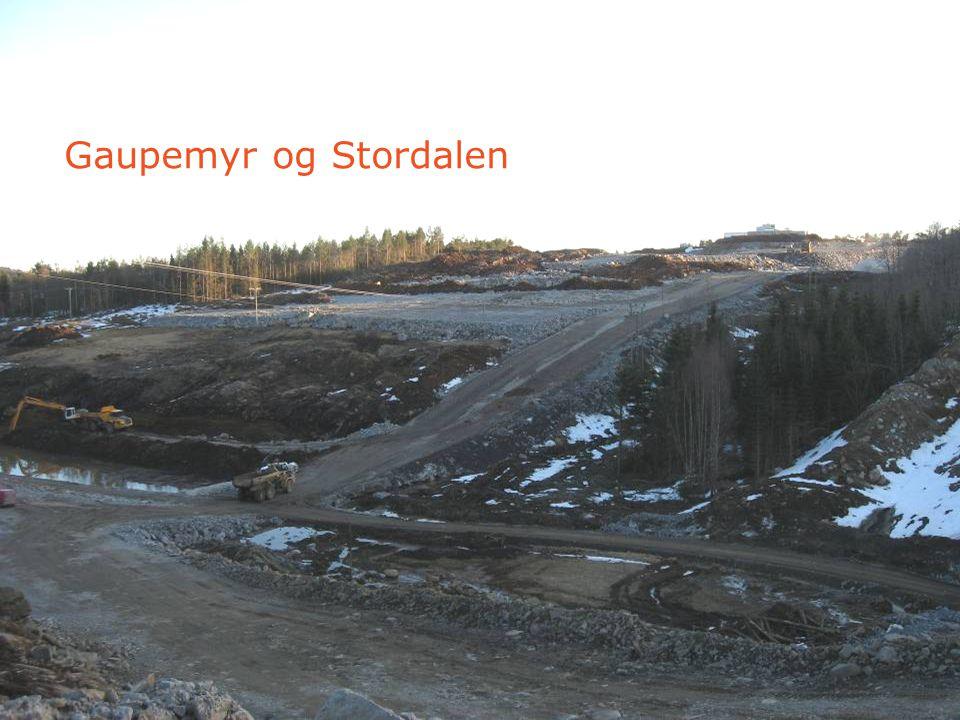 Gaupemyr og Stordalen 11. mai 2007 - Side 39