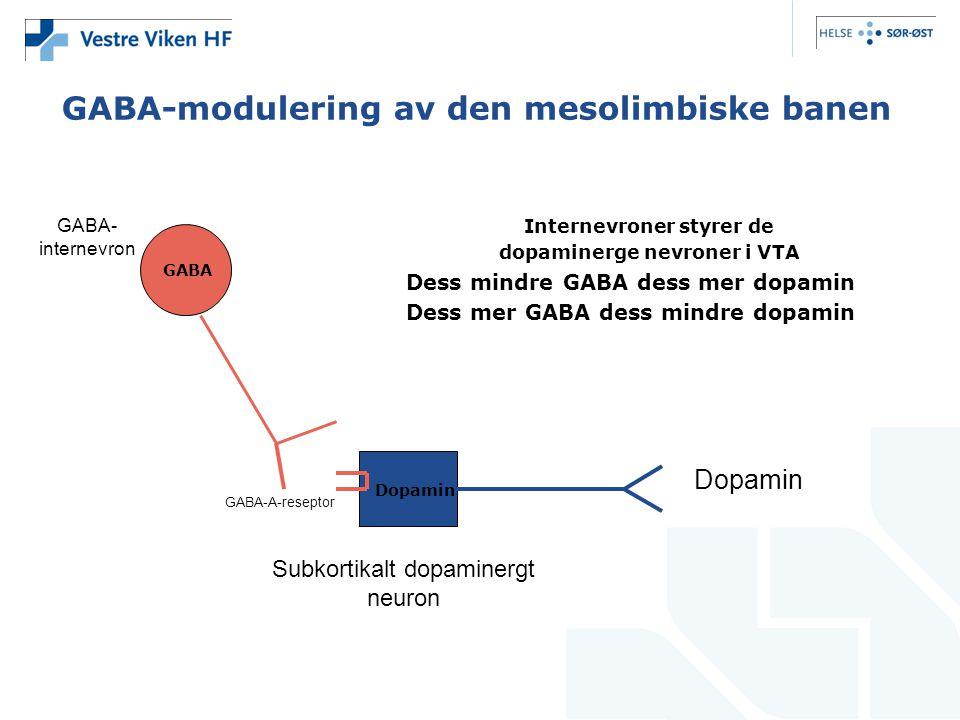 GABA-modulering av den mesolimbiske banen