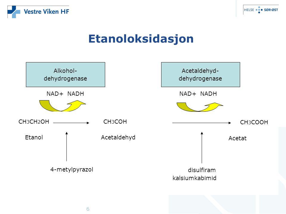 Etanoloksidasjon Alkohol- dehydrogenase Acetaldehyd- dehydrogenase