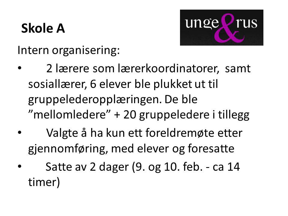 Skole A Intern organisering: