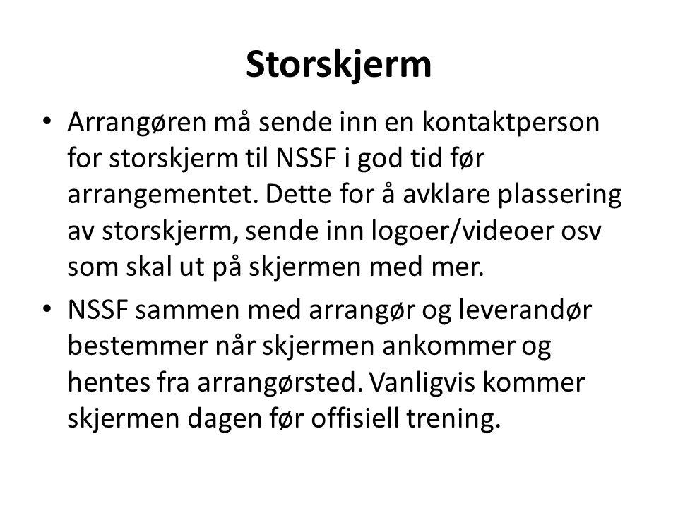Storskjerm