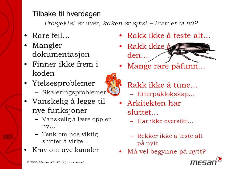 Mangler dokumentasjon Finner ikke frem i koden Ytelsesproblemer