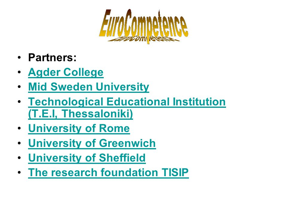 Partners: Agder College. Mid Sweden University. Technological Educational Institution (T.E.I, Thessaloniki)