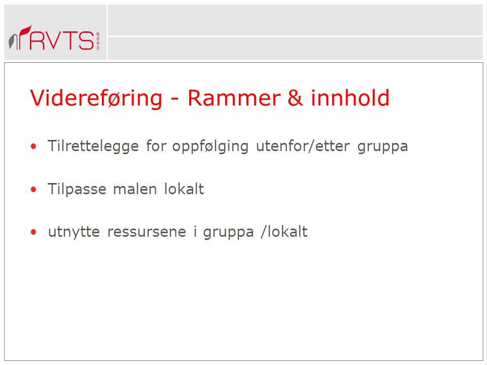 Videreføring - Rammer & innhold