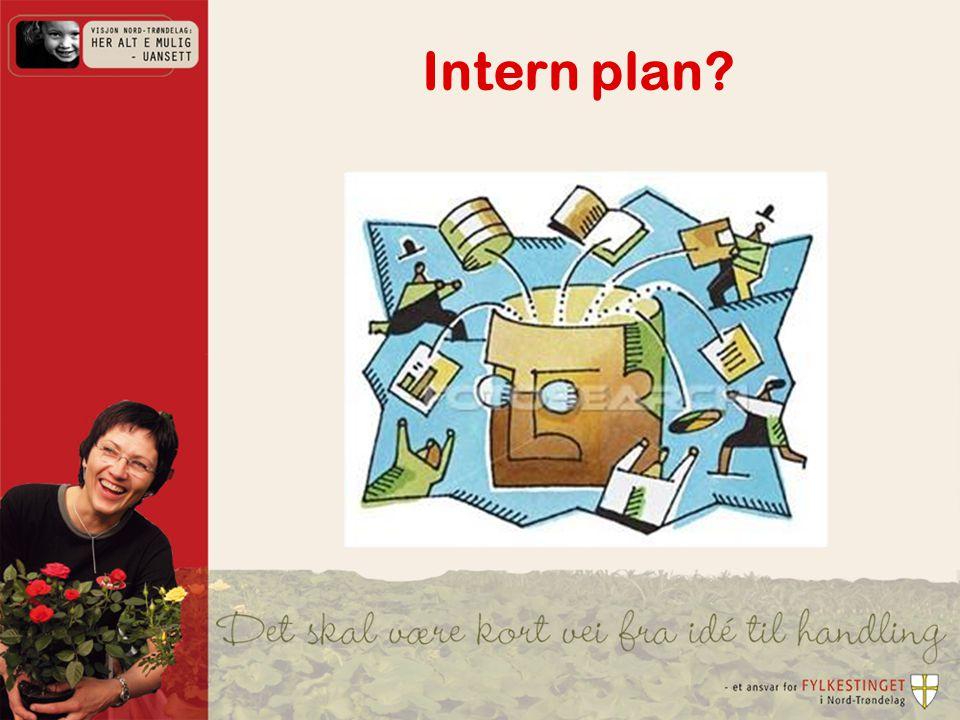 Intern plan