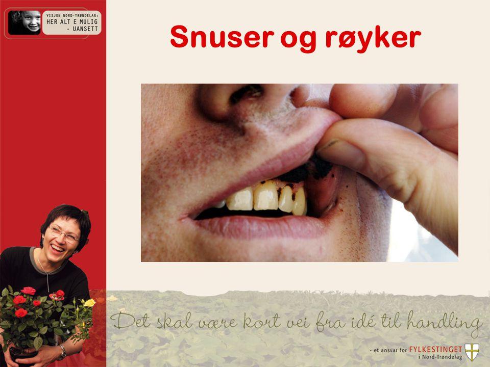 Snuser og røyker