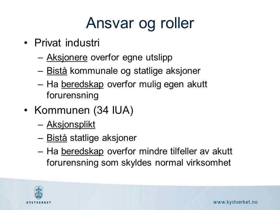Ansvar og roller Privat industri Kommunen (34 IUA)
