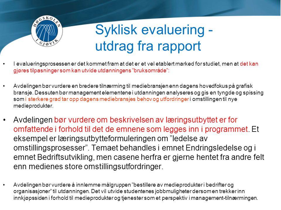 Syklisk evaluering -utdrag fra rapport