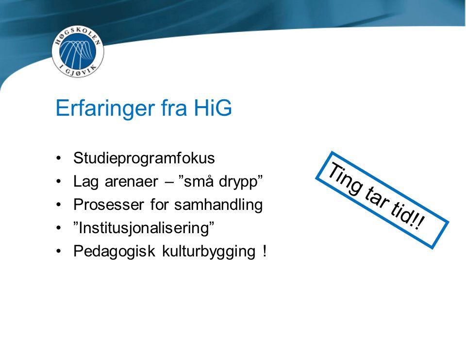Erfaringer fra HiG Ting tar tid!! Studieprogramfokus