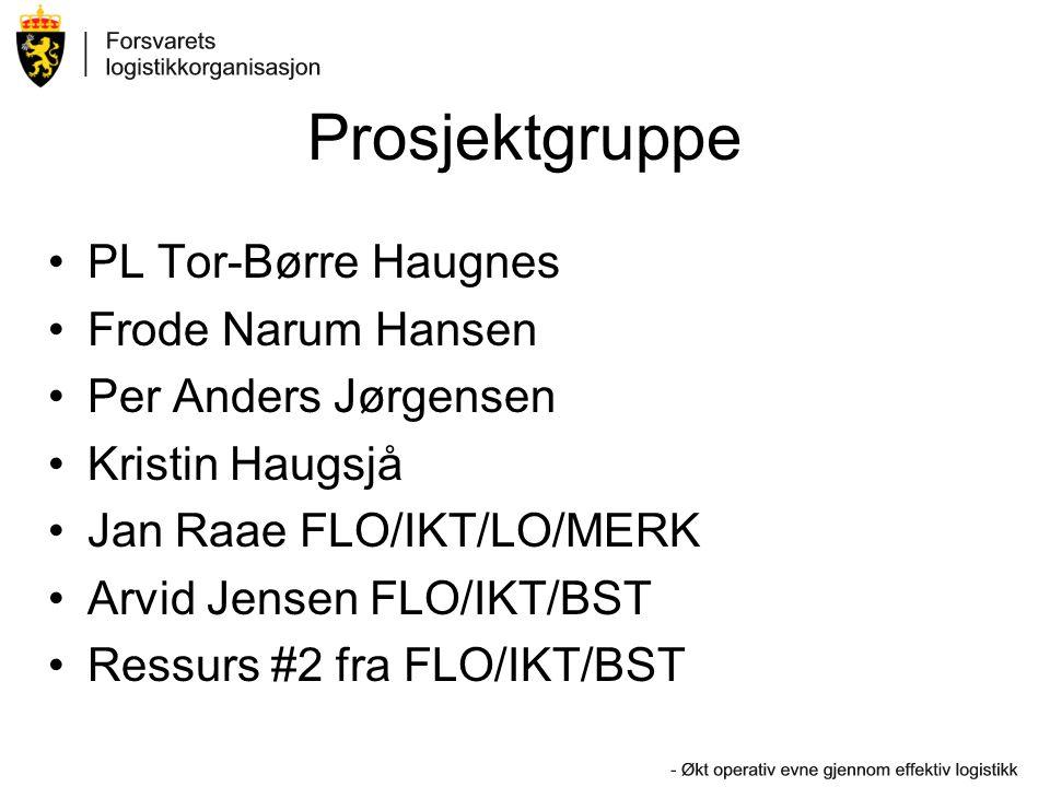 Prosjektgruppe PL Tor-Børre Haugnes Frode Narum Hansen
