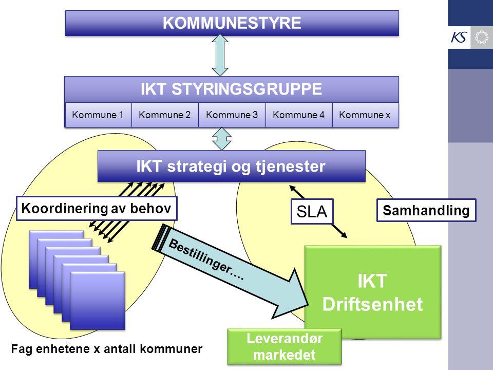 IKT strategi og tjenester
