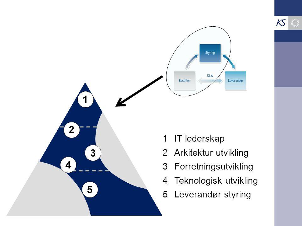 1 2 3 4 5 1 IT lederskap 2 Arkitektur utvikling 3 Forretningsutvikling