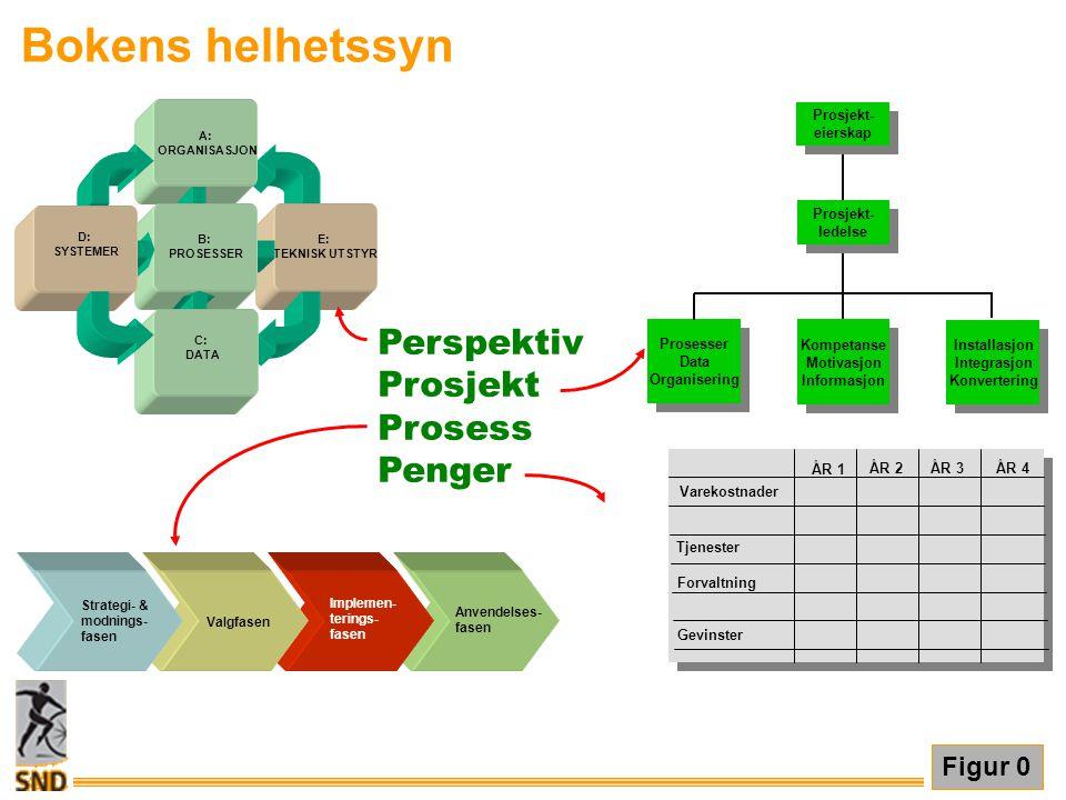Bokens helhetssyn Perspektiv Prosjekt Prosess Penger Figur 0 Prosesser